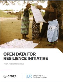 OpenDRI report pic